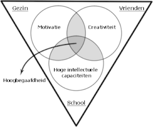 monks model voor hoogbegaafdheid