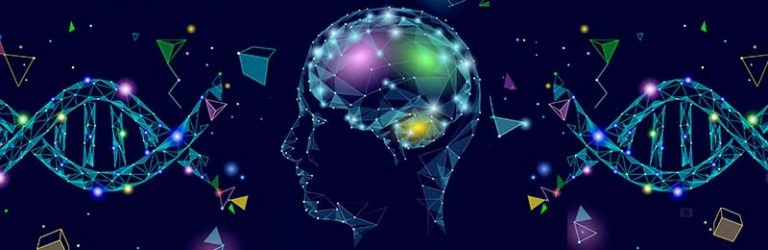 Is het IQ erfelijk?