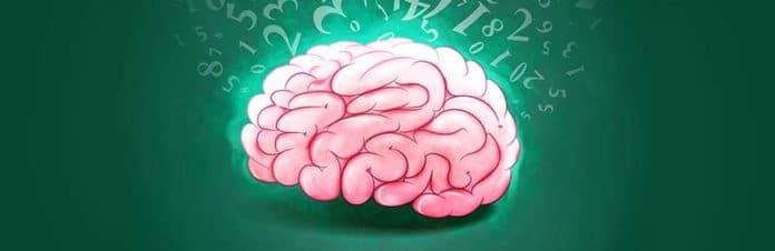 Gemiddelde IQ