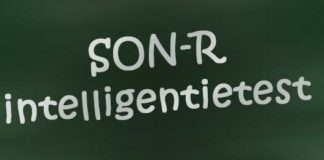 SON-R intelligentietest